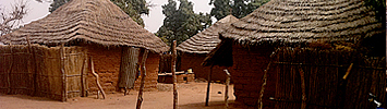 A Gambian compound